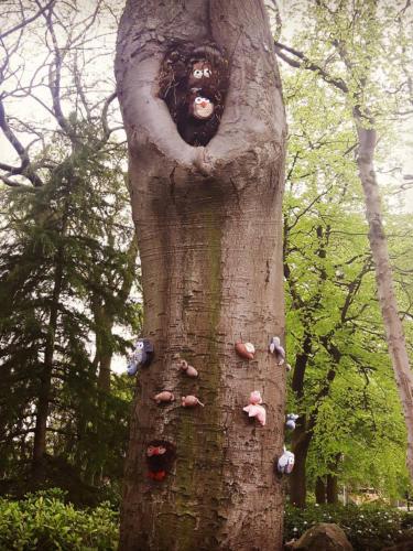 woollen woods pic 9